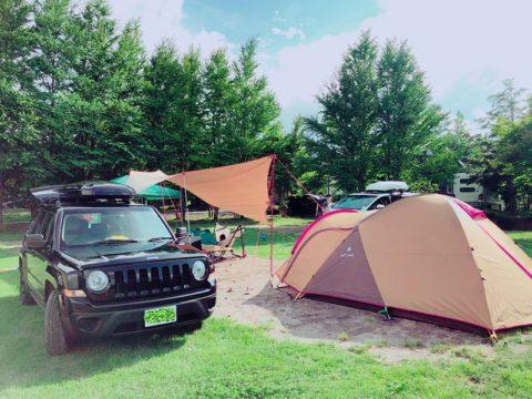 今年もキャンプ